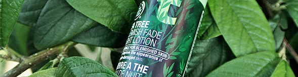 tea tree blemush fade night lotion 2 The Body Shop Tea Tree Blemish Night Fade Lotion